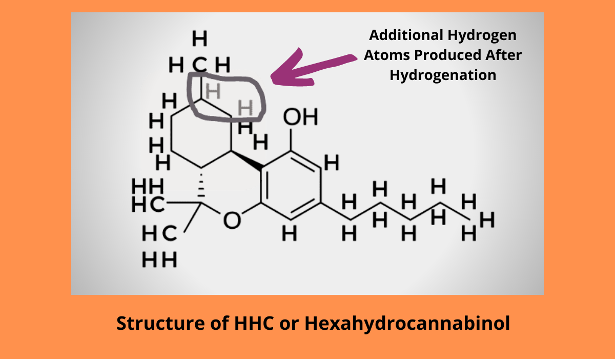Structure of HHC