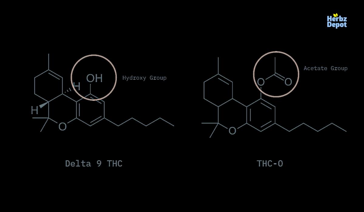 Delta-9 THC vs THC-O